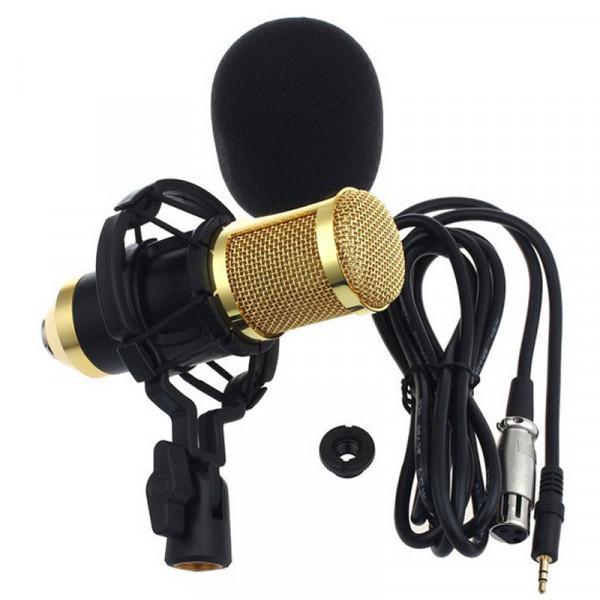 Microfone Condensador Profissional Bm800 Studio Audio